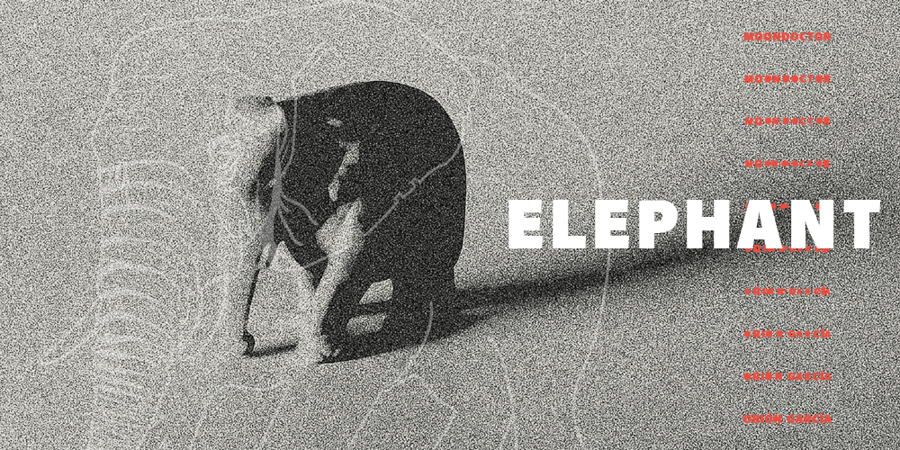Elephant Ep – MoonDoctoR and Orión García